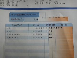 11.3.23hideo01.jpg