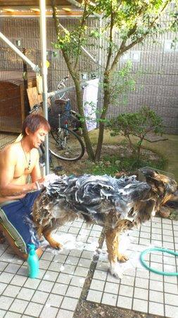 2011.8.30hideo01.jpg