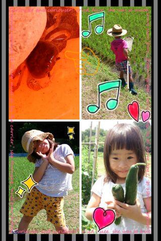 IMG_2013061651661.jpg
